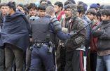 L'expulsion des clandestins pour arrêter l'immigration