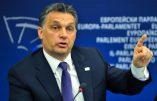 """Viktor Orban veut """"mettre fin par tous les moyens à l'immigration"""""""