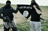 Djihadistes en Syrie et allocataires sociaux en Belgique !