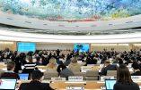 Le Nigéria se dresse à l'ONU contre la propagande LGBT et l'attaque des principes religieux