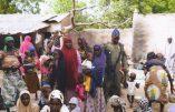 30 otages libérés des mains de Boko Haram