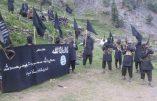 Un groupe islamiste pakistanais fait allégeance à l'Etat Islamique