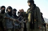 Nouvelles menaces contre les Européens au Mali sur fond de rivalité entre factions djihadistes