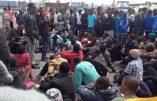 A Vintimille, un campement sauvage d'immigrés clandestins évacué pour vol d'électricité et d'eau