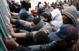 Chronique du grand remplacement écrite par une Tunisienne dans Jeune Afrique
