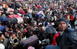 Le grand remplacement, une réalité démographique ? Conférence de Claude Timmerman le 30 mars 2019 à la Fête du Pays Réel