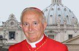 """""""Cette invasion d'immigrés est un cheval de Troie contre l'Europe"""" (cardinal Antonio Cañizares, archevêque de Valence)"""