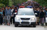 """""""On veut de l'argent, pas de la nourriture"""", crient des immigrés en Allemagne"""