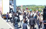 """Les immigrés à Calais : """"une organisation quasi militaire"""", témoigne le procureur Valensi"""