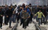 Chaque immigré va nous coûter en moyenne 450.000 euros, selon une étude allemande