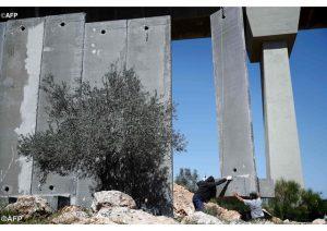 mur_palestine