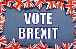 Le Brexit, et après ? (Jean-Michel Vernochet, Bruno Guigue)