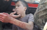 """Photo de l'enfant palestinien capturé, torturé et décapité par les amis """"modérés"""" de Hollande, Fabius, Sarkozy, Obama, etc…"""