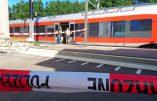 Attaque d'un train suisse : un homme poignarde six passagers et tente de mettre le feu au train