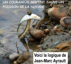 propagande-jm-ayraul