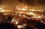 """La jungle de Calais brûle car incendier sa maison, c'est une """"tradition"""" chez les migrants"""