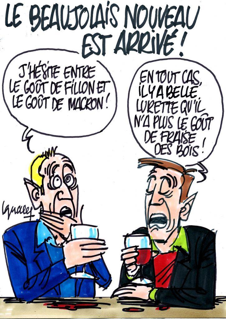 Ignace - Le Beaujolais nouveau est arrivé !