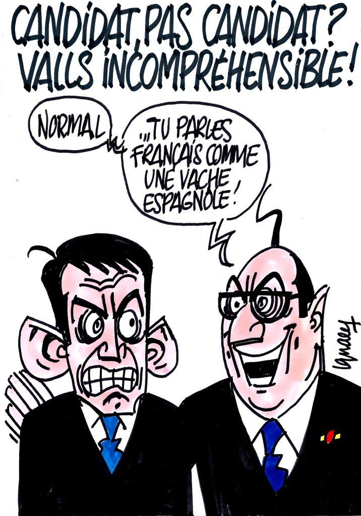 Ignace - Valls candidat ou pas ?