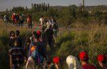 """Autriche : un demandeur d'asile syrien accusé de vingt """"meurtres en tant que délit terroriste"""""""