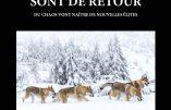 Les loups sont de retour – Du chaos vont naître de nouvelles élites (Thomas Flichy de La Neuville)
