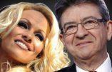 De Pamela Anderson à Noam Chomsky, les nouveaux soutiens de Jean-Luc Mélenchon