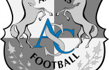 Ligue 1 : Amiens, le nouveau venu