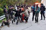 Assaut de migrants à la frontière espagnole