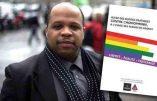 Louis-Georges Tin, le communautariste noir-LGBT, l'esclavagisme et la chasse à Colbert
