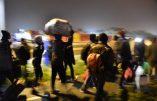 Paris – Un nouveau camp pour immigrés illégaux installé discrètement rue Lacretelle, dans le XVe arrondissement