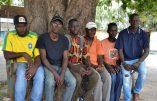 Des Gambiens s'engagent contre la tentative de migration illégale vers l'Europe après avoir subi violences et esclavage en Libye
