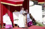 Futur synode en Amazonie: est-ce la porte ouverte à l'ordination d'hommes mariés?
