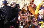 Une Femen tente de s'emparer de l'Enfant-Jésus de la crèche du Vatican