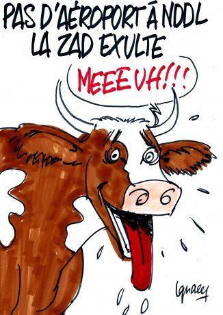 Ignace - La ZAD exulte