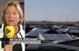 """Violences inter-ethniques à Calais ? Le maire dénonce la complicité """"de certains No Border ou de certains associatifs""""… Comme la franc-maçonnerie ?"""