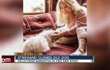 Caprice de star : clonage de chien pour Barbra Streisand