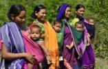 Démographie : au tour de l'Inde de décrocher