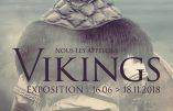"""A Nantes du 16 juin au 18 novembre 2018 : expo """"Nous les appelons Vikings !"""""""