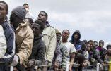 Les «réfugiés» préfèrent vivre des aides sociales que d'un emploi