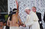 Synode en Amazonie: porte ouverte au ministère des femmes et des hommes mariés ?
