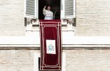 Vidéo du pape François pour protéger la famille: aucune allusion aux attaques contre la famille traditionnelle