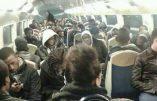 L'inquiétant rapport parlementaire au sujet de l'immigration clandestine en Seine-Saint-Denis