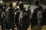 """Ces """"réfugiés"""" qui vont en vacances dans leur pays d'origine où ils risquent soi-disant leur vie"""
