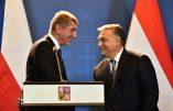 Le Premier ministre tchèque soutient Viktor Orban et annonce la fin de carrière des eurodéputés de son parti qui ont voté les sanctions contre la Hongrie