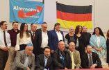 """Allemagne – L'AfD présente sa """"section juive"""""""