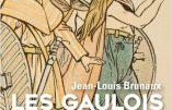 Les Gaulois – Vérités et légendes (Jean-Louis Brunaux)