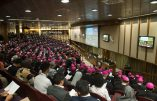 Le document final du Synode: la suite de la révolution conciliaire et d'Amoris Laetitia