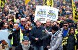 Bruxelles – Des milliers de manifestants contre le Pacte de Marrakech