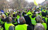 """Acte VI à Toulon – Enorme foule derrière la banderole """"Nous sommes le peuple de France"""""""