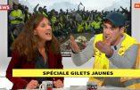 Elise Fajgeles, député LREM, avoue aux Gilets Jaunes qu'elle ne sait pas quel est le montant du SMIC