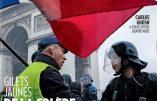 Paris-Match au centre des critiques après avoir mis Hervé Ryssen en couverture
